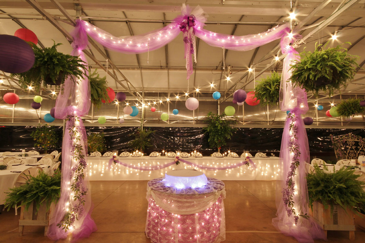 The Greenhouse At Vista Weddings Receptions Banquests Parties 10