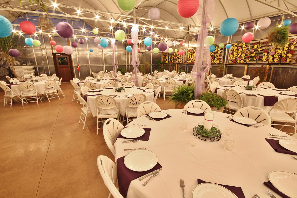The Greenhouse At Vista Weddings Receptions Banquests Parties 7