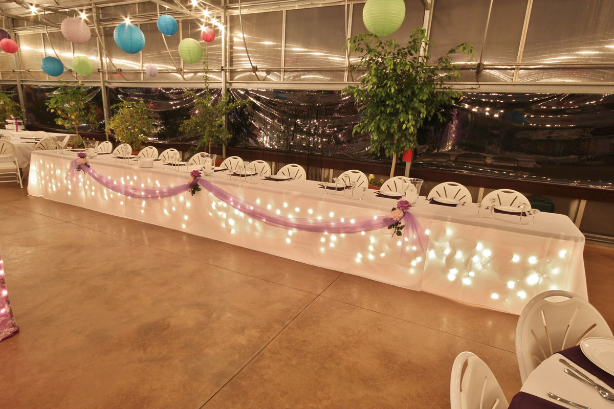 The Greenhouse At Vista Weddings Receptions Banquests Parties 8